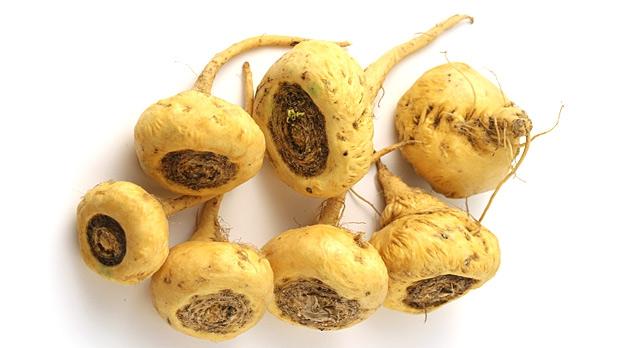 maca antioxidanter
