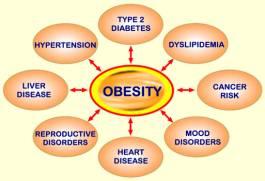 Chiafrön för viktminskning